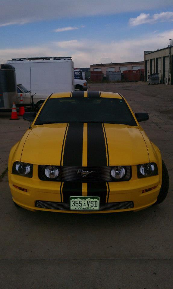 Black Stripe mustang wrap