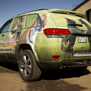 jeep and car wraps in colorado